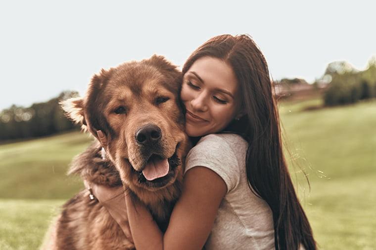 Heute ist: Welthundetag!