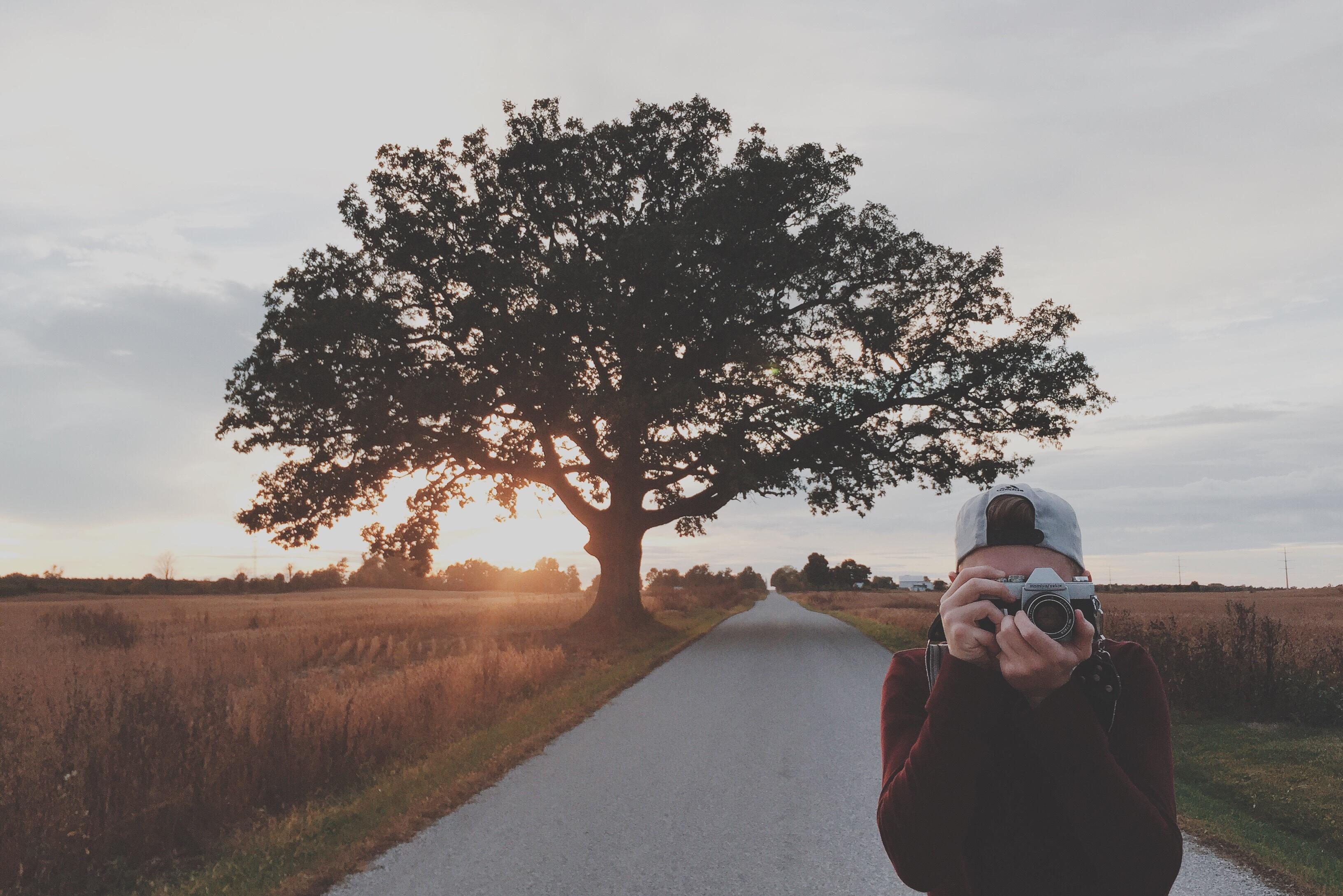 Trendspotting: Lebensbäume