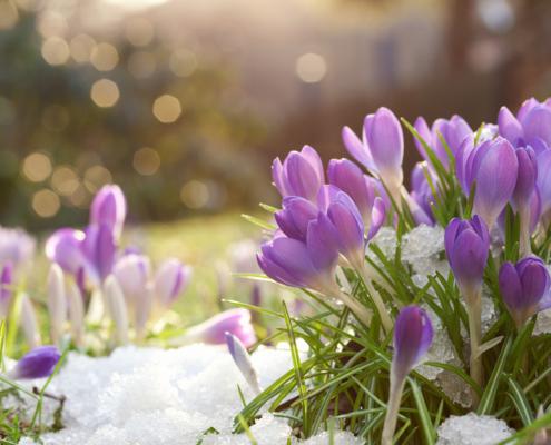 Schmucktrends zum Frühlingsanfang