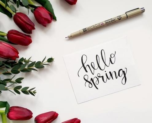 Am 20. März ist Frühlingsanfang!