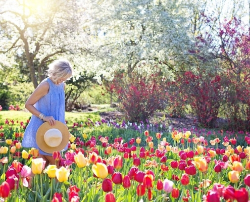 Blumenmeer - florale Schmuck-Highlights