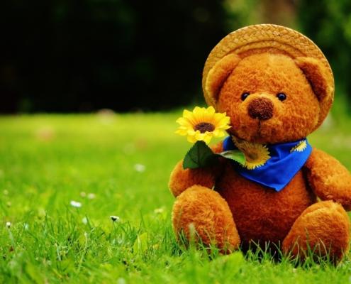 Tag des Teddys